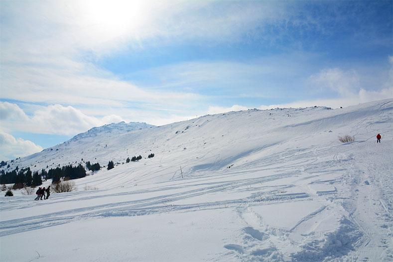 Лавина Блага Димитрова сняг