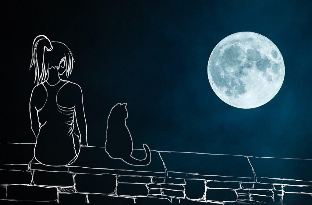 рисунка на момиче в лятна нощ с котка и луна