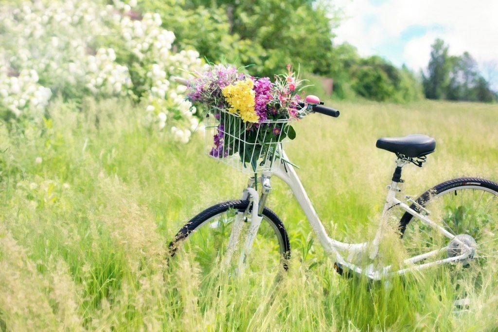 колело с кош, пълен с цветя насред зелена поляна